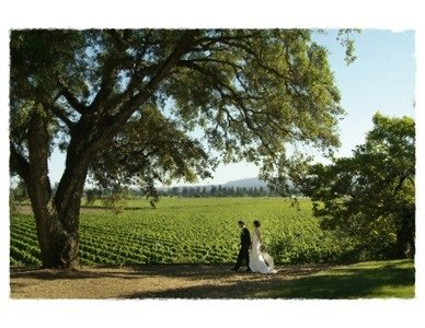 photo 2 of Healdsburg Country Gardens Weddings