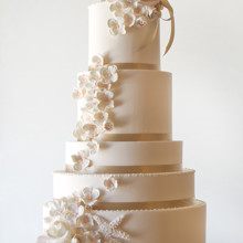 220x220 sq 1497456524556 beachchicweddingcakehaileyblog