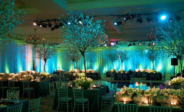 Green Indoor Reception Wedding Reception Photos Amp Pictures