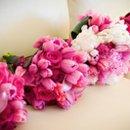 130x130_sq_1286993291192-pinkbouqets