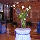 130x130 sq 1236882810891 flowers,white