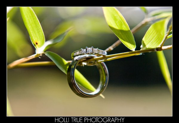 photo 71 of Holli True Photography