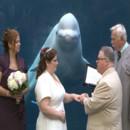 130x130 sq 1466794955186 jodi  whale watch ing