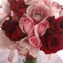 130x130 sq 1231116644140 rosesandcymbidiumorchids