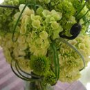 130x130 sq 1231117355515 hydrangea,kermits,beargrassandferncurls