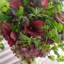 130x130 sq 1231117985703 hydrangea,ladysmantle,anemone,callas
