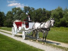 Serenity Farms Carriages photo