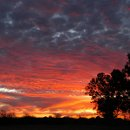 130x130_sq_1359084207068-sunset