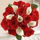 130x130_sq_1243794912851-redroses