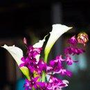 130x130 sq 1343239974034 flowers1350