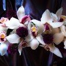 130x130 sq 1343239976177 flowers3750