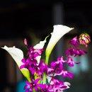 130x130 sq 1343240058022 flowers375
