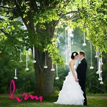 220x220 sq 1358729650517 weddingwire