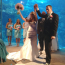 130x130 sq 1427765126278 floridaaquariumwedding193
