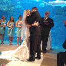 130x130 sq 1427765157757 floridaaquariumwedding191
