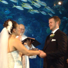 220x220 sq 1427765105296 floridaaquariumwedding310