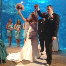 220x220 sq 1427765126278 floridaaquariumwedding193