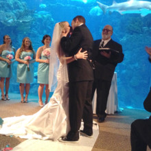 220x220 sq 1427765157757 floridaaquariumwedding191