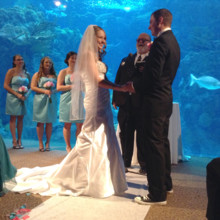 220x220 sq 1427765190590 floridaaquariumwedding190