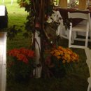 Autumn flowers and tree branches decorated the spacious tent