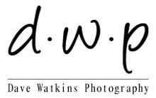 220x220_1207349239692-08_master_logo