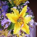 130x130 sq 1219192528873 yellow creamlilieslavendersiderdbm6 24 06