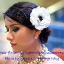 130x130_sq_1327768687403-butterflyenchantressanemone
