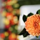 130x130 sq 1449687342121 flower
