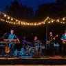 Travis Allison Band image