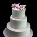 130x130 sq 1449524184737 pink orchid with thin band wedding cake