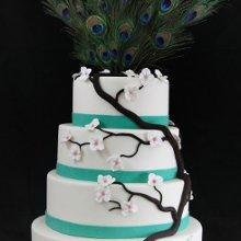 220x220 sq 1357853071731 peacockwedding