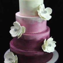 220x220 sq 1420744392296 purple ombre wedding cake