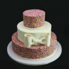 220x220 sq 1420744396056 rainbow sprinkles with bow wedding cake