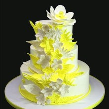 220x220 sq 1420744404188 yellow whimsical embossed flowers wedding cake