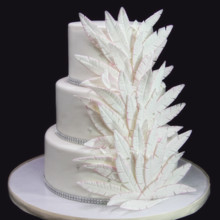 220x220 sq 1433365212996 feather wedding cake
