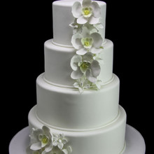 220x220 sq 1443811432022 white orchids wedding cake
