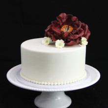 220x220 sq 1449520297448 single tier wedding cake