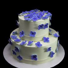 220x220 sq 1449520472633 shower of blue hydrangeas cake