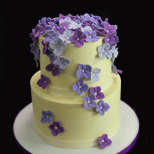 220x220 sq 1449520537905 shower of purple hydrangeas cake