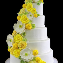 220x220 sq 1459534059749 5 tier flower cascade wedding cake