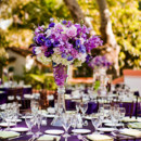 130x130 sq 1379097496217 purple centerpiece wedding 9