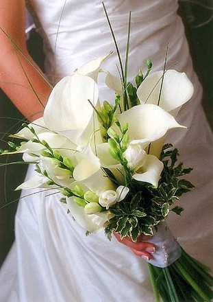 Hialeah wedding florists reviews for florists amor bridal flowers wedding and event planning junglespirit Images