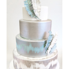 220x220 sq 1471121136260 blue silver feather cake