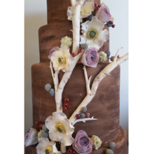 220x220 sq 1471121659186 rustic wood grain branches cake