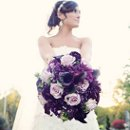130x130 sq 1328457274536 awesomecloseupofbrittanysbouquet