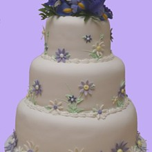 220x220 sq 1327784183919 weddingcut