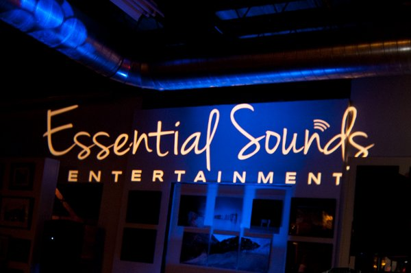 photo 5 of Essential Sounds Entertainment