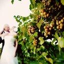 130x130 sq 1352932088254 wedding1217of2044