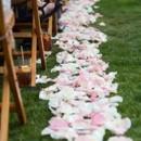 130x130 sq 1453410549861 wedding aisle petals