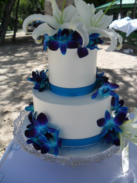 photo 48 of Magical Weddings and Events, LLC